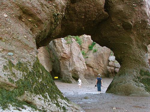 Stancile Hopewell, un exemplu superb de eroziune - Poza 4