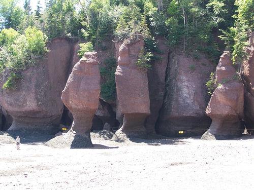 Stancile Hopewell, un exemplu superb de eroziune - Poza 2
