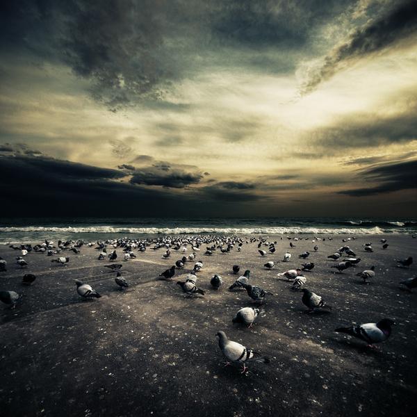 Ibai Acevedo - expunere perfecta - Poza 31