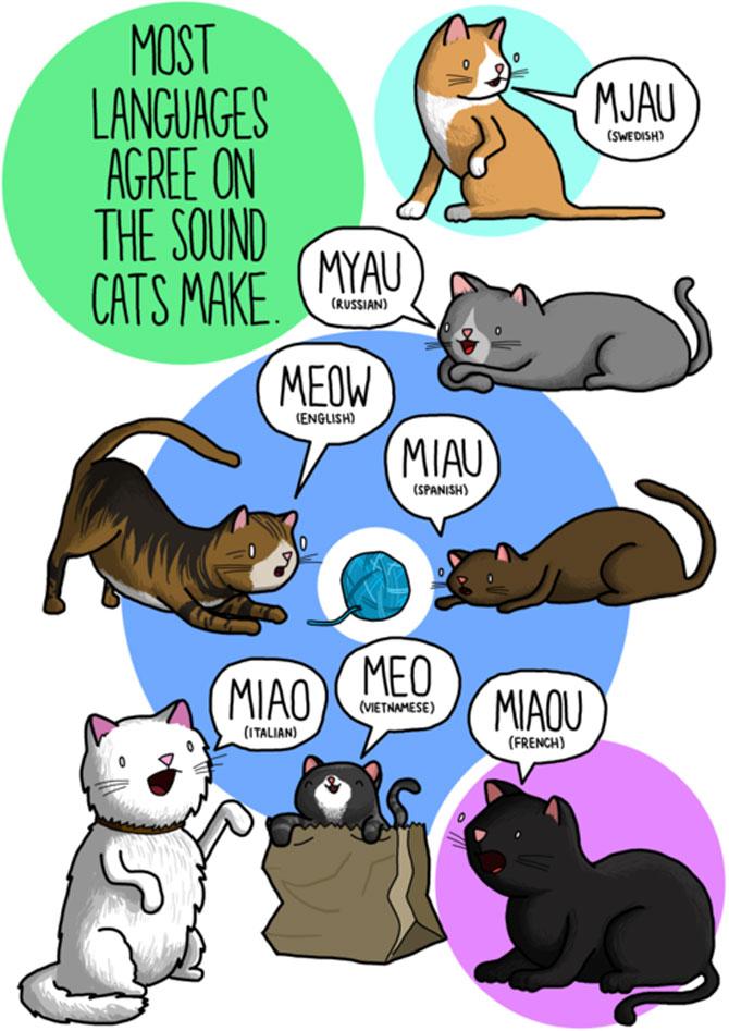 Cum suna animalele in diferite limbi? - Poza 3
