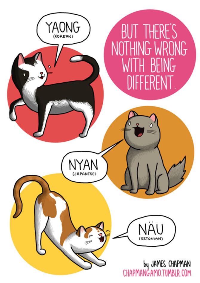 Cum suna animalele in diferite limbi? - Poza 4