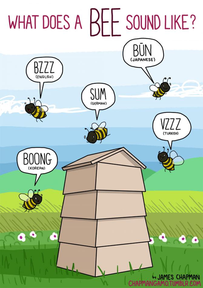 Cum suna animalele in diferite limbi? - Poza 7