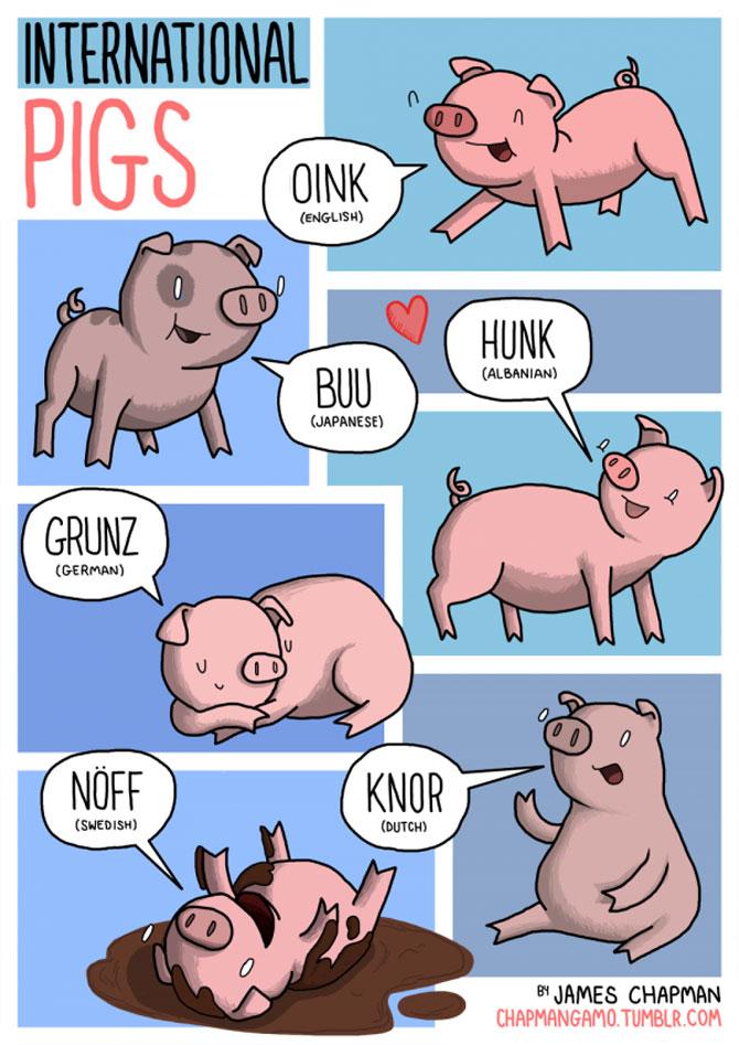 Cum suna animalele in diferite limbi? - Poza 8