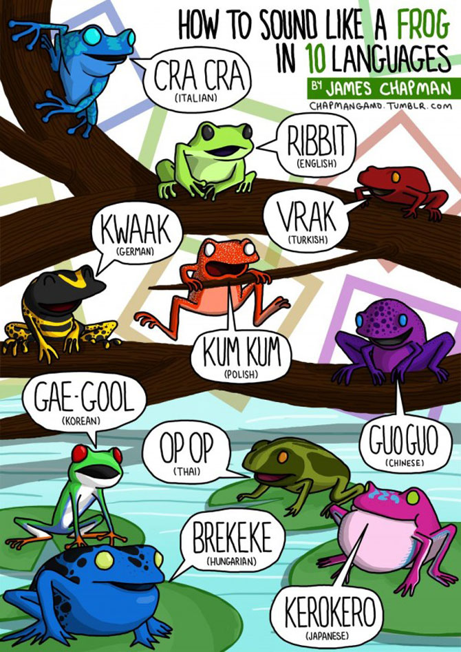 Cum suna animalele in diferite limbi? - Poza 10