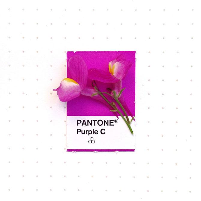 Perechi de culori Pantone si obiecte mici - Poza 2