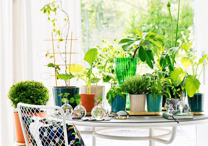 Idei verzi pentru interioare cu personalitate - Poza 6
