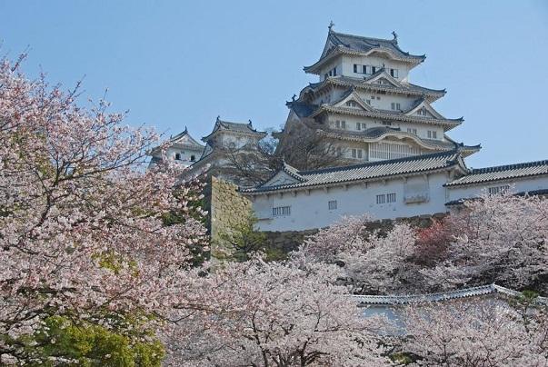 Japonia intre intelepciune si arta - Poza 2
