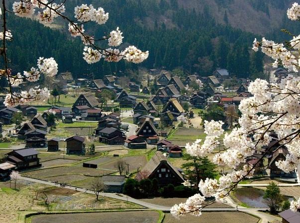 Japonia intre intelepciune si arta - Poza 4
