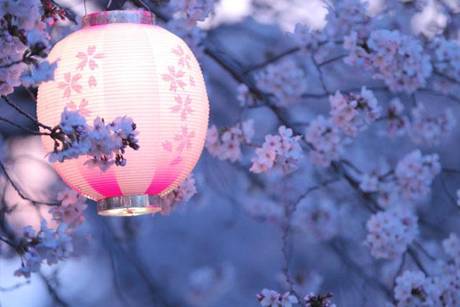 25 de flori din Japonia - Poza 8