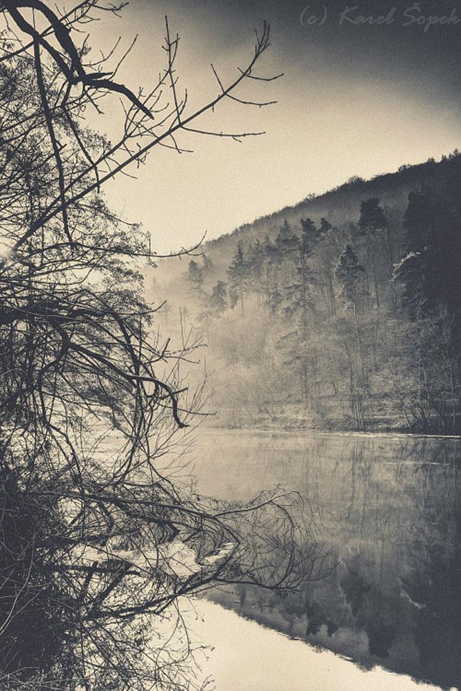 Povesti din paduri parasite, de Kaja Sopek - Poza 1