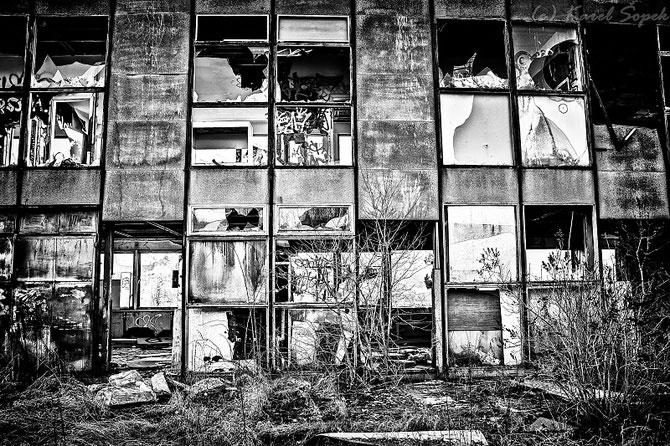 Povesti din paduri parasite, de Kaja Sopek - Poza 6