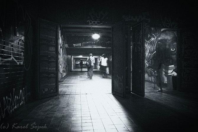 Povesti din paduri parasite, de Kaja Sopek - Poza 11