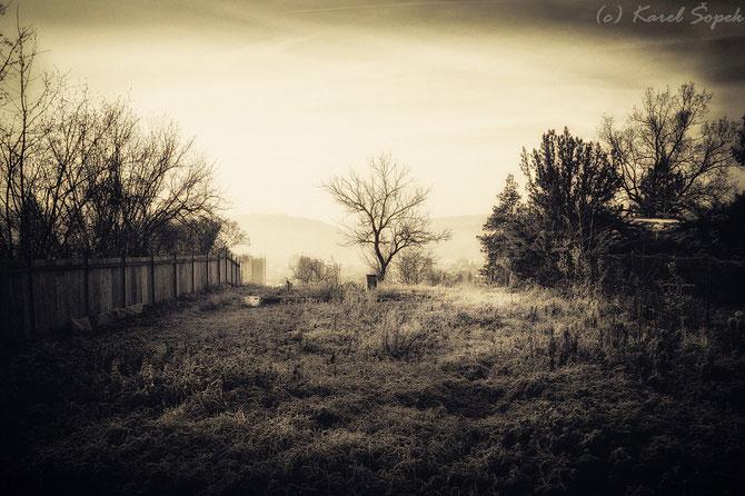 Povesti din paduri parasite, de Kaja Sopek - Poza 14