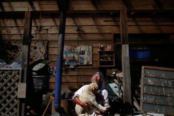 A salvat 500 de animale din ruinele de la Fukushima - Poza 2