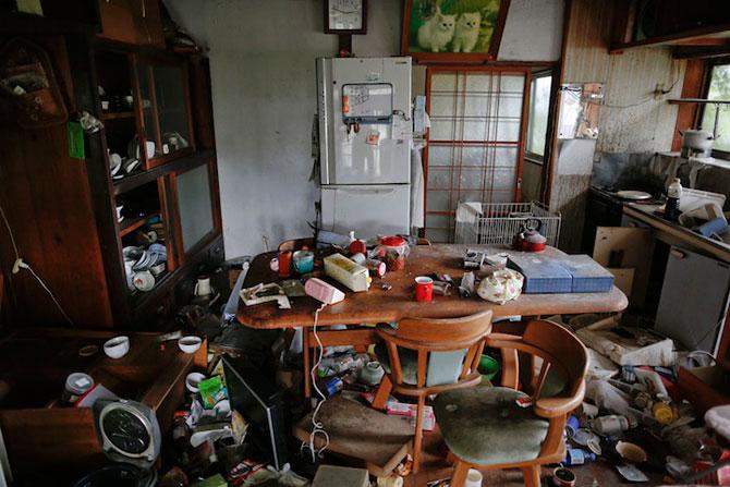 A salvat 500 de animale din ruinele de la Fukushima - Poza 5