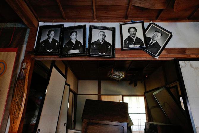A salvat 500 de animale din ruinele de la Fukushima - Poza 7