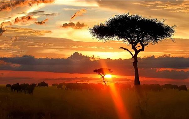 Taramuri mirifice: Kenya - Poza 1