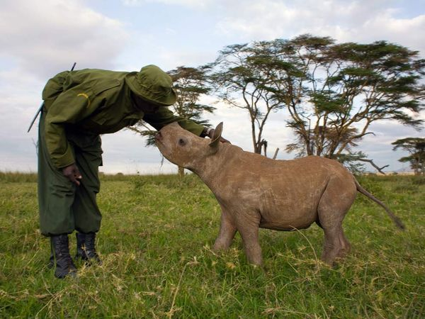 Taramuri mirifice: Kenya - Poza 15