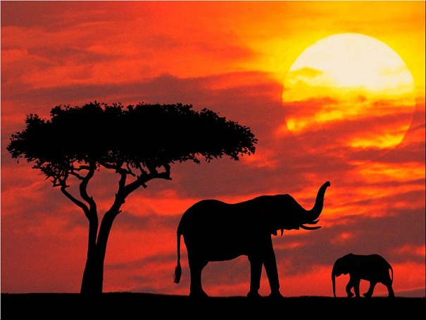 Taramuri mirifice: Kenya - Poza 2