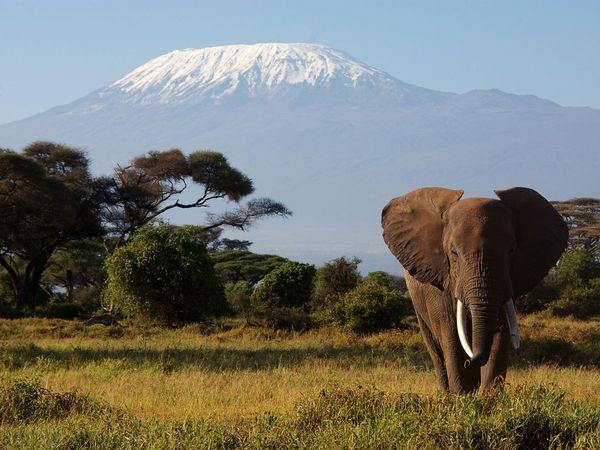 Taramuri mirifice: Kenya - Poza 20