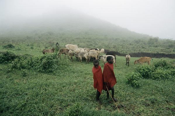 Taramuri mirifice: Kenya - Poza 21