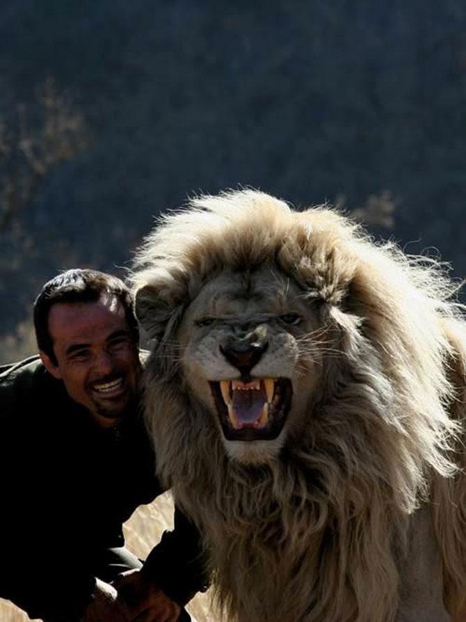 Kevin Richardson, imblanzitorul de lei - Poza 13