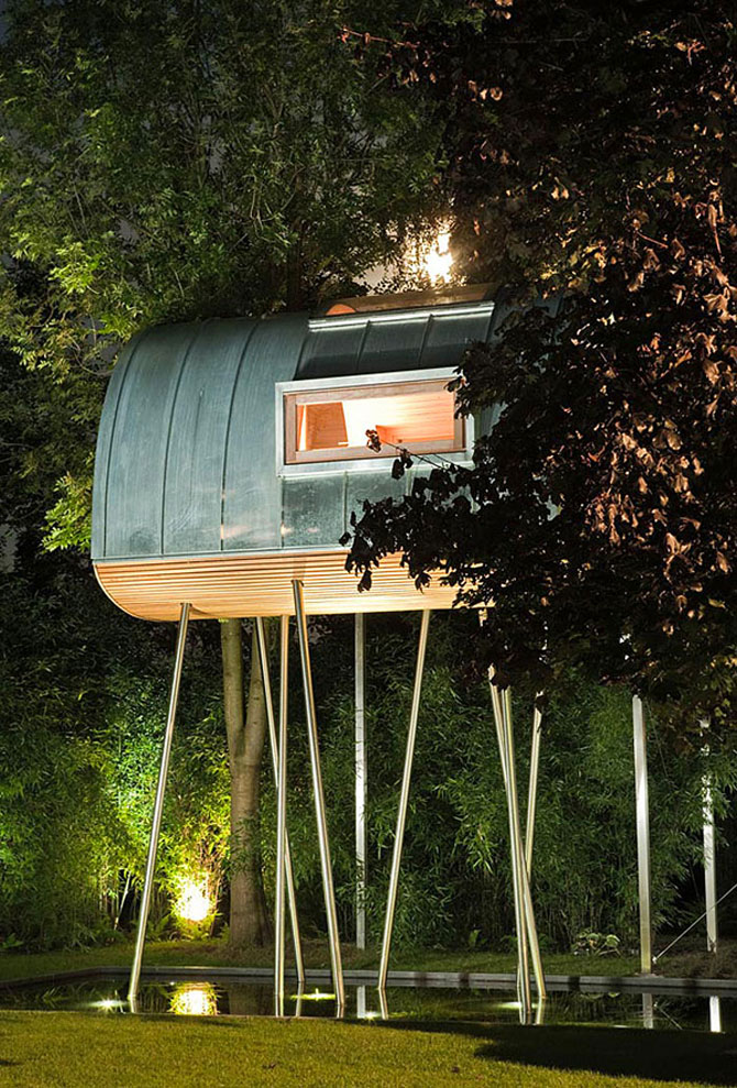 Regele broastelor locuieste intr-un copac din Rinul de Nord, Germania - Poza 3