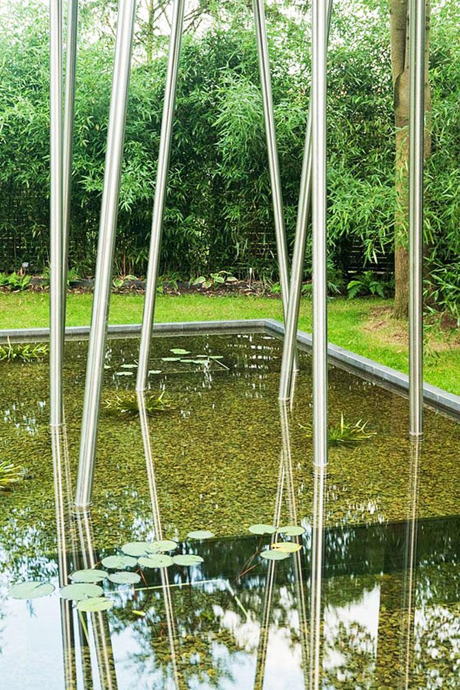 Regele broastelor locuieste intr-un copac din Rinul de Nord, Germania - Poza 11