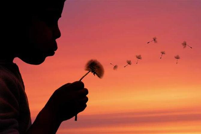 Viata ca o calatorie, cu Kittiwut Chuamrassamee - Poza 2