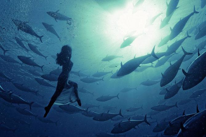 Dans subacvatic, surprins de Kurt Arrigo - Poza 4