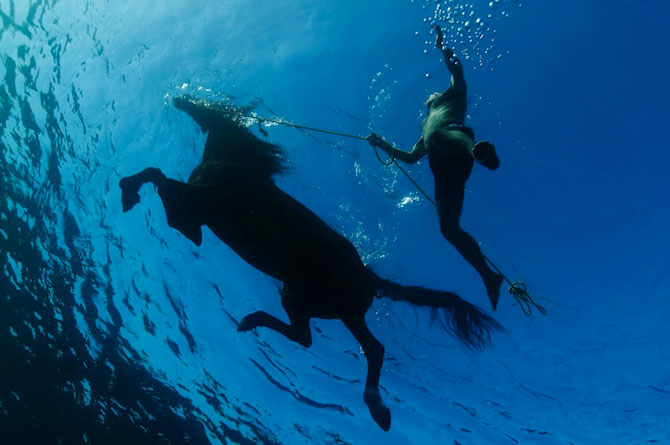 Dans subacvatic, surprins de Kurt Arrigo - Poza 6