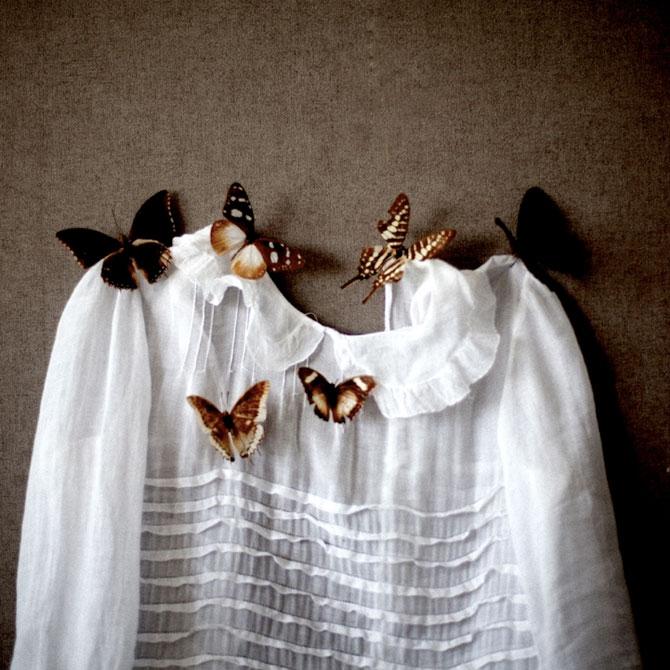 Fotografii fluturi Emmanuelle Brisson