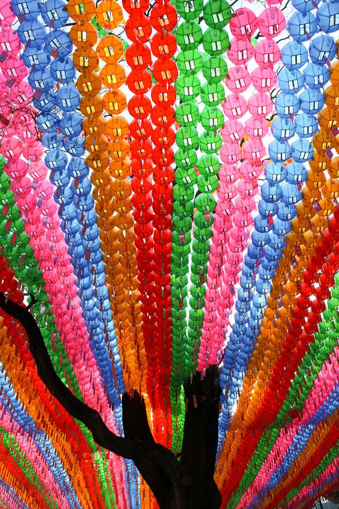 Lampioane colorate in Coreea, de ziua lui Buddha - Poza 6