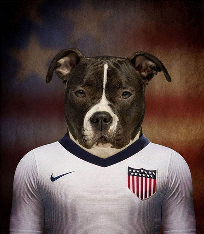 Cainii tarilor de la Cupa Mondiala de Fotbal 2014 - Poza 10