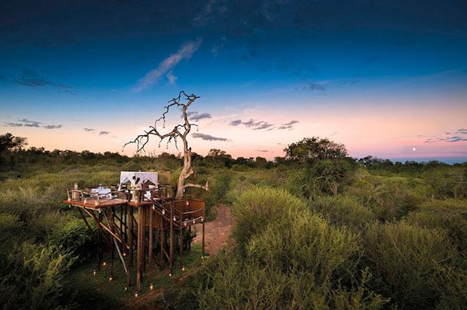 Safari sub cerul liber, intr-o statiune luxoasa din Africa de Sud - Poza 1