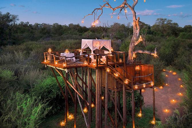 Safari sub cerul liber, intr-o statiune luxoasa din Africa de Sud - Poza 2