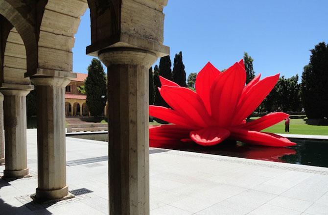 Lotusul rosu care respira, de Choi Jeong-Hwa - Poza 4