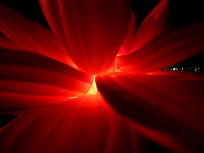 Lotusul rosu care respira, de Choi Jeong-Hwa - Poza 6