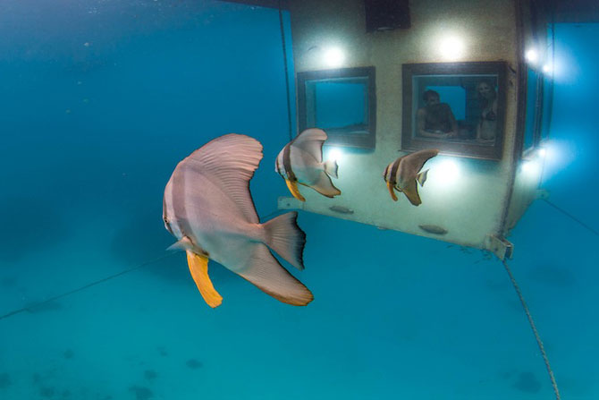 Statiune africana, cu dormitor sub ape - Poza 4