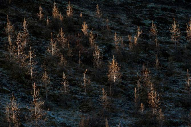 21 de poze cu Islanda abstracta, de Marino Thorlacius - Poza 9