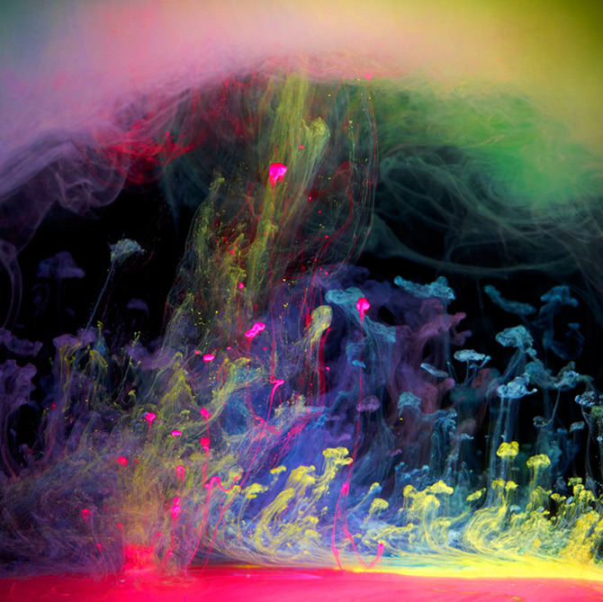 Flori subacvatice in cerneala cu Mark Mawson - Poza 6