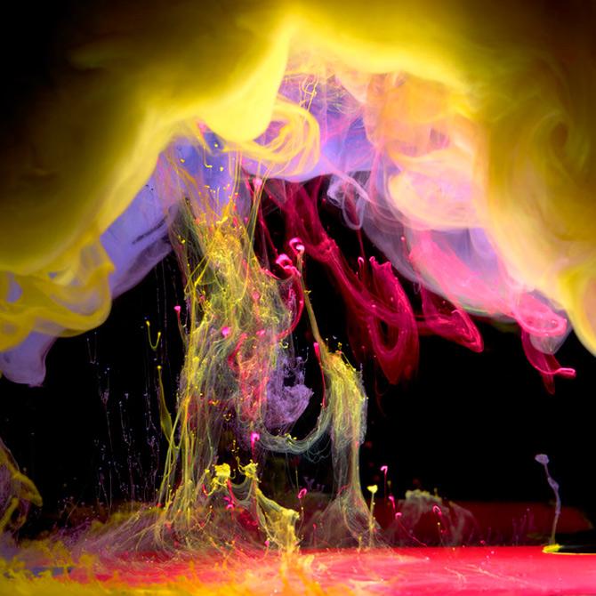 Flori subacvatice in cerneala cu Mark Mawson - Poza 7