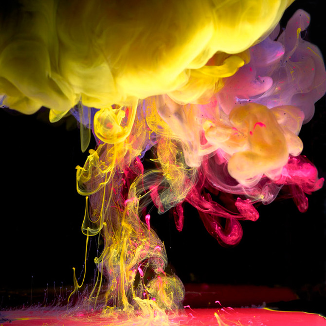 Flori subacvatice in cerneala cu Mark Mawson - Poza 9