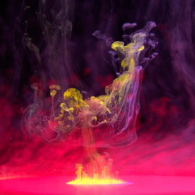 Flori subacvatice in cerneala cu Mark Mawson - Poza 13