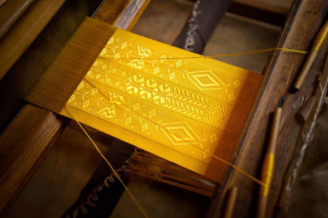 Matase de aur fabricata de paianjeni - Poza 1