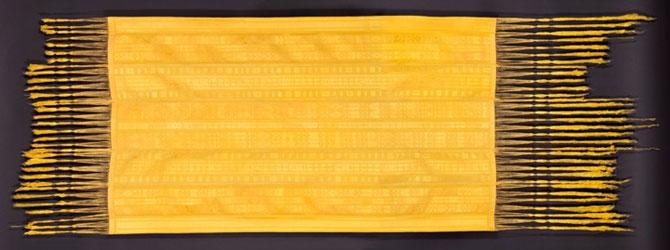 Matase de aur fabricata de paianjeni - Poza 5