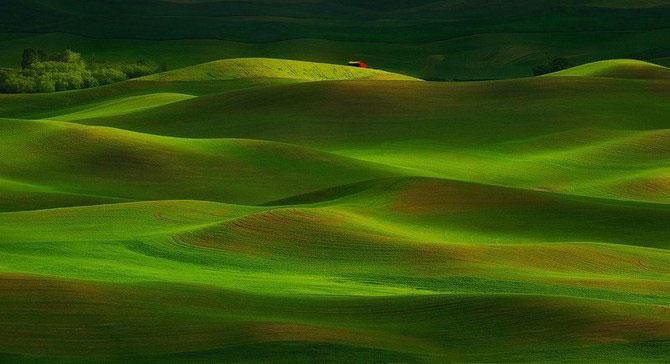 Frumusetea naturii i-a schimbat viata lui Miles Morgan - Poza 3
