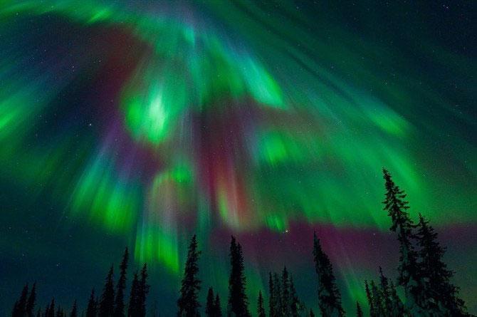 Frumusetea naturii i-a schimbat viata lui Miles Morgan - Poza 5