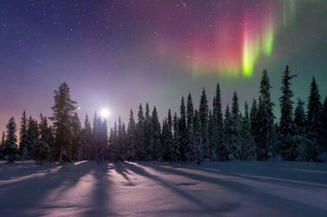 Frumusetea naturii i-a schimbat viata lui Miles Morgan - Poza 6