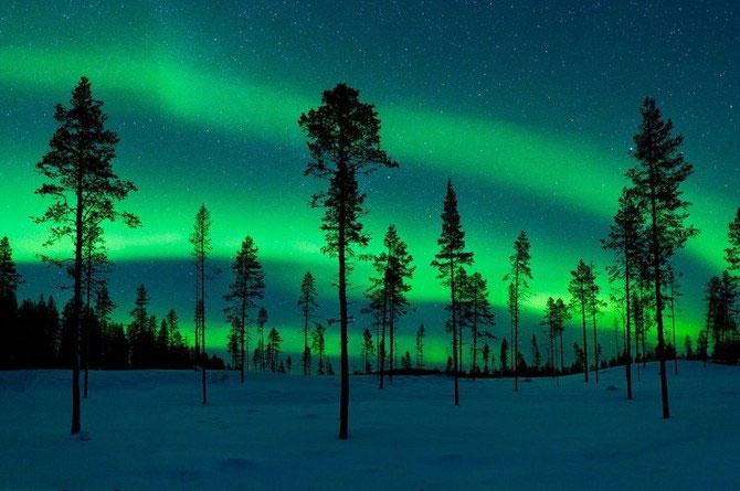 Frumusetea naturii i-a schimbat viata lui Miles Morgan - Poza 7